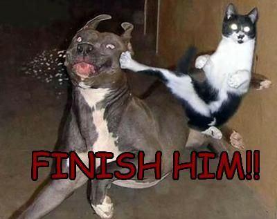 finishHim.jpg